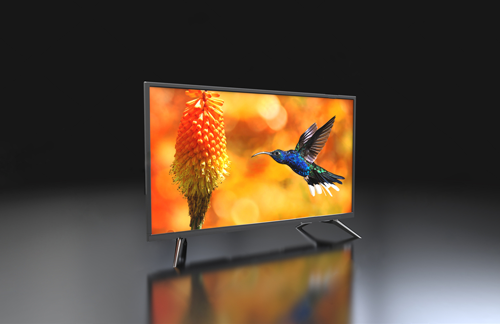 Television displaying high definition hummingbird